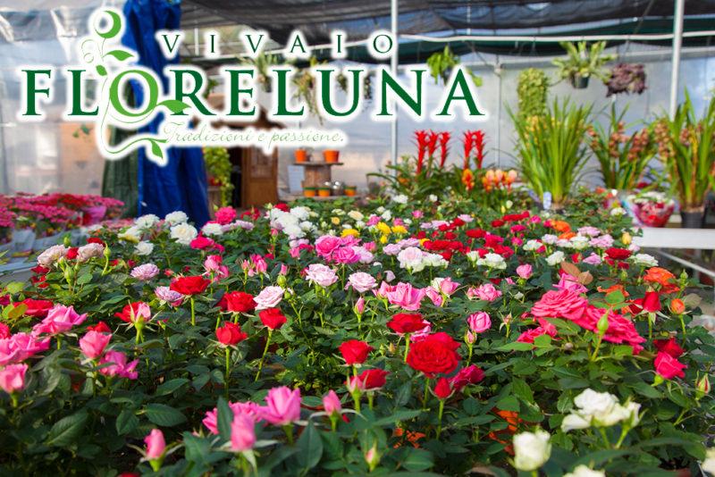 Floreluna-Alghero-TotAlguer