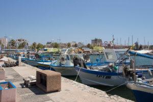 Consorzio-del-porto-Alghero-TotAlguer10