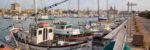 Consorzio-del-porto-Alghero-TotAlguer14