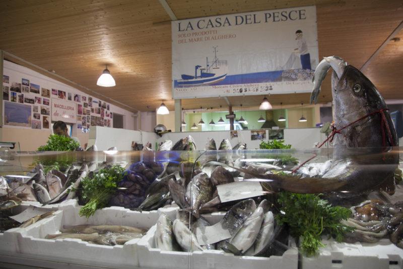 La casa del pesce Alghero TotAlguer