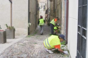 Cittadinanza-attiva-Alghero-TotAlguer
