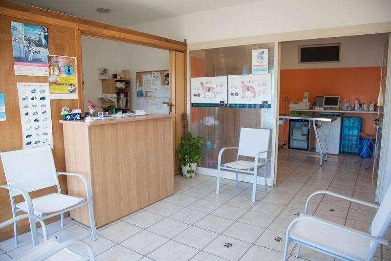 Ambulatorio-Veterinario-Dott.sse-Arca-Ruiu-Alghero-TotAlguer